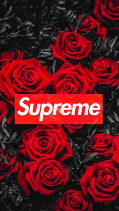 Supreme – – Emely Sembt - Picbilder- Wir Für Bilder - Best of Wallpapers for Andriod and ios Supreme Iphone Wallpaper, Hype Wallpaper, Iphone Background Wallpaper, Aesthetic Iphone Wallpaper, Cool Wallpaper, Wallpaper Quotes, Jesus Wallpaper, Summer Wallpaper, Iphone Backgrounds