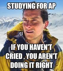 20 Best Ap Exams Images Ap Exams Humor Make Me Laugh
