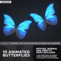 10 Animated Butterflies Alpha Channel, White Image, Diffuser, Butterfly, Animation, Animation Movies, Butterflies, Motion Design