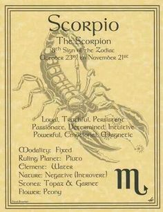 Scorpio Zodiac Astrology Sign Book Of Shadows Parchment Page Poster Witch Wicca Scorpio Traits, Scorpio Girl, Scorpio Love, Zodiac Signs Scorpio, My Zodiac Sign, Astrology Zodiac, Astrology Signs, Scorpio Quotes, Zodiac Art