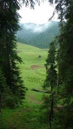 TUDOR PHOTO BLOG: Poiana Ponor din Padis - Muntii Apuseni,judetul Bihor,Romania,Europa Bulgaria, True Beauty, Tudor, Romania, Beautiful Places, Mountains, Country, Nature, Blog