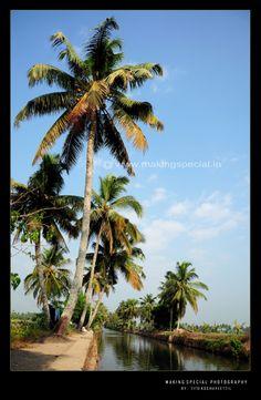 Alappuzha, Kerala,
