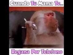 CUANDO TU MAMA TE REGAÑA POR TELEFONO CUALQUIER PARECIDO ES REAL