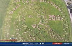 There's a Giant Corn Maze Shaped Like Taylor Swift's Face - http://modernfarmer.com/2015/09/taylor-swift-corn-maze/?utm_source=PN&utm_medium=Pinterest&utm_campaign=SNAP%2Bfrom%2BModern+Farmer