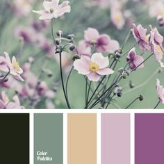 color of greens, color of young greens, green and purple colors, jade color, light green color, light purple color, malachite color, pale purple color