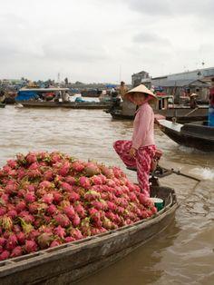 Woman transporting boatload of dragon fruit, Vietnam