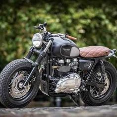 The new triumph build for Dutch over at the bike shed #triumphmotorcycles