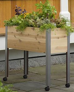 Standing garden is an easier way to grow salad greens, herbs and tomatoes. You can move the cart in and out of the sun or to water.