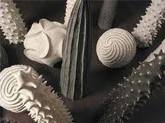 Image result for seed pod ceramics