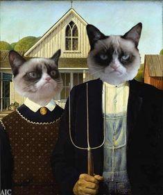 abode of kindness — Grumpy Ghotic #catsmemelaughingsohard