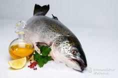 nice Fotografie » Lachsöl – Kulinarische Streifzüge Numero 8«,  #Food #Stills
