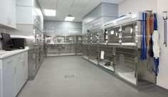Veterinary Clinic | Picture courtesy of Willows Veterinary Centre and Referral Service, UK ...