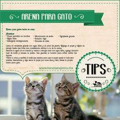 Arena para gatos hecha en casa. Tu Casa Express #TipsExpress