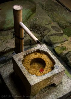 Zen Garden Stone Basin with Autumn Leaf | Drop by drop is the water pot filled. Likewise, the wise man, gathering it little by little, fills himself with good. -Buddha