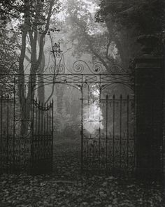 Edwin Smith  Gates, Hardwich House Park  Bury St Edmunds,Suffolk, 1955  From Evocations of Place: The Photography of Edwin Smith