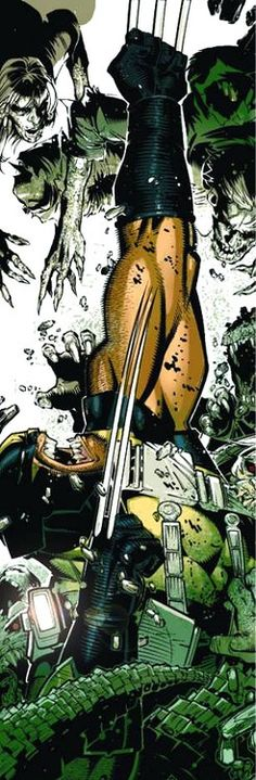 Wolverine by Chris Bachalo *