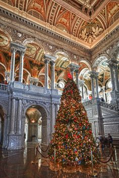 Christmas Tree in the Jefferson Building of the Library of Congress, Washington, D.C. ~~ Photographer: Chris Reed