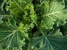 Super Foods: Leafy Greens