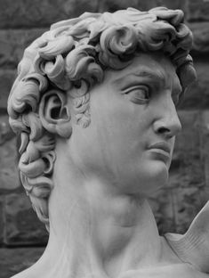 michelangelo david face - Поиск в Google
