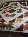 Voting for the Nature's Best Quilt Contest
