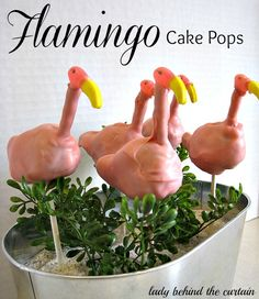 Lady Behind The Curtain - Flamingo Cake Pops