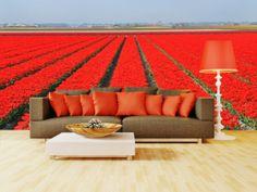 #fototapeta #dekoracja #sciany #wnetrza #tulipany #tulips #nature #red  Tętniące życiem aleje czerwonych tulipanów! http://dekorujemysciany.pl/alejki-czerwonych-tulipanow-72.html