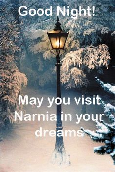 Wishing you sweet dreams. I would love to visit Narnia - Hopefully someday I will. Many blessings, Cherokee Billie