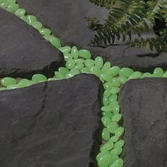 These aren't jelly beans. Glow in the dark stones for your walkway or garden path.