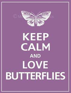 Keep calm love Butterflies! Great for the front of Butterfly's logbook Butterfly Quotes, Butterfly Kisses, Butterfly Images, Keep Calm Posters, Keep Calm Quotes, Butterflies Flying, Beautiful Butterflies, Keep Calm And Love, My Love