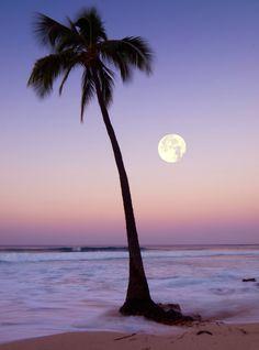 Hawaiian Moonset