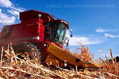 A Farm Wife's Life: Corn Harvest 2012
