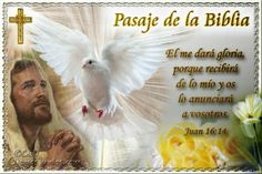 Vidas Santas: Santo Evangelio según san Juan 16:14