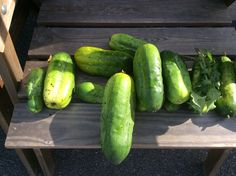 Cucumber, Vegetables, Vegetable Recipes, Zucchini, Veggies