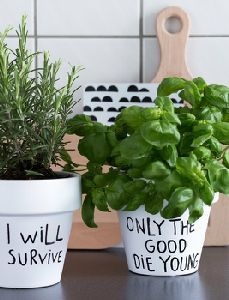 If Plants could Sing. Hilarious pots! #pots #garden  I totally need these