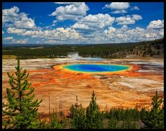 Grand Prismatic Spring, Yellowstone Park- Just one more reason my Nadia and I would rather go to Yellowstone than Disney.