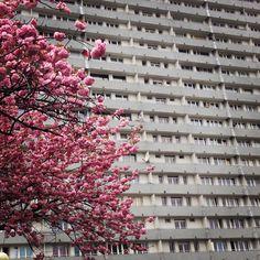"""Block of flats """"Superjednostka"""" designed by Mieczysław Król, inspired by Le Corbusier, 1972, Katowice, Poland"""