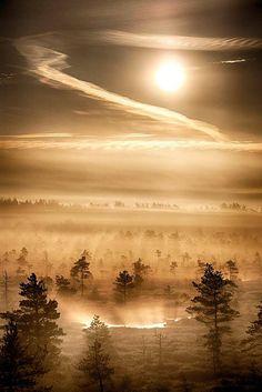 estonia | by maison9/2