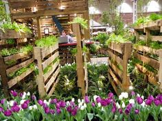 Pallet garden. I've got dogs and can't plant on the ground, I think this would be so great!