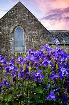Ballintubber Abbey in County Mayo, Ireland - TouCanvas County Mayo Ireland, Mosques, Temples, Scotland, Irish, Scenery, Clouds, Architecture, World