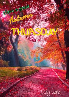 Have A Great Thursday, Stay Safe, Country Roads, Neon Signs