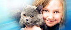 Charlotte NC Vet, Charlotte NC Animal Hospital | Long Animal Hospital and Emergency Center, Charlotte NC
