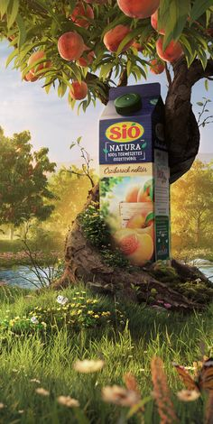 Full CGI visual of nature and peach garden. A product surrounded by the tree with peaches on top. Ads Creative, Creative Posters, Creative Advertising, Advertising Design, Social Media Poster, Social Media Design, Photoshop, Green Marketing, Montage Photo