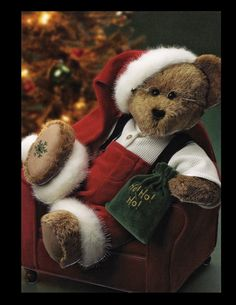 Have a Beary Merry Christmas and Happy Holidays to those who celebrate other holidays. Thanks to all for love and support!