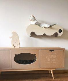 for pets-Wąsy- półka- drapak dla kota
