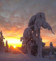 Sunset in Levitunturi