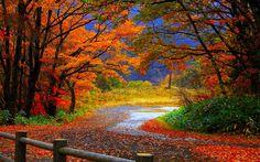 autumn fall scenery wallpaper