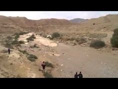 Rebirth Of Zin River In Israeli Desert - YouTube
