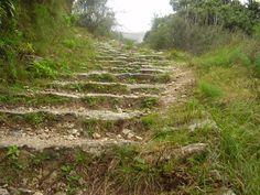 Lugares y rutas en la Comunidad Valenciana. Alicante, Valencia, Vineyard, Places To Visit, Hiking, Country Roads, Outdoor Decor, Nature, Koh Tao