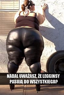 Stylowa kolekcja inspiracji z kategorii Humor Ssbbw, Humor, Leather Pants, Funny Pictures, Funny Memes, Womens Fashion, Tbs, Marcel, Search
