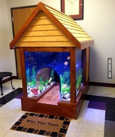 Fish tank dog house because why not